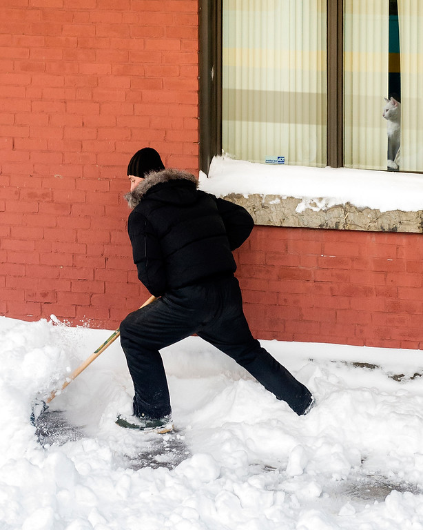 Man shoveling snow while a mildly interested cat looks on