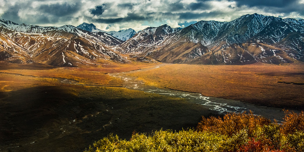 View from Polychrome Pass- Denali National Park